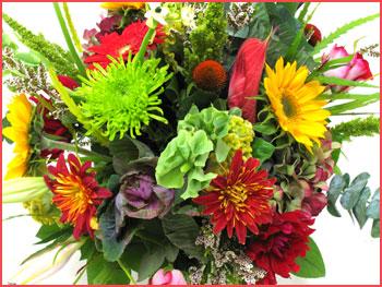 Birthday wishes with flowers in marathi flowers healthy wele to shreeyoginfo marathi love diwali greetings m4hsunfo
